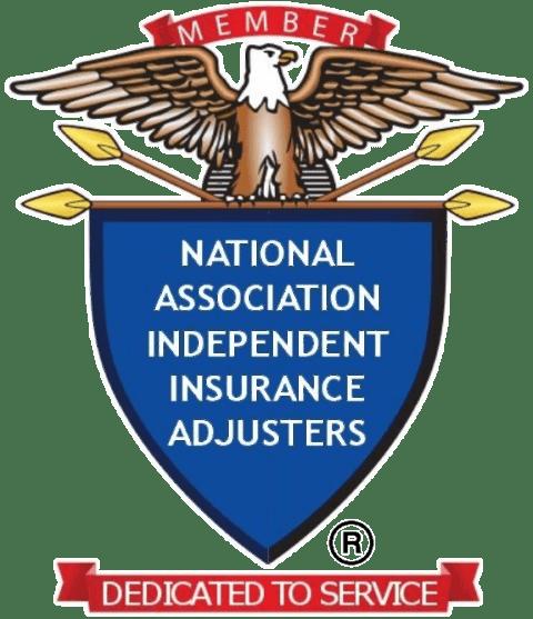 NAIIA Logo